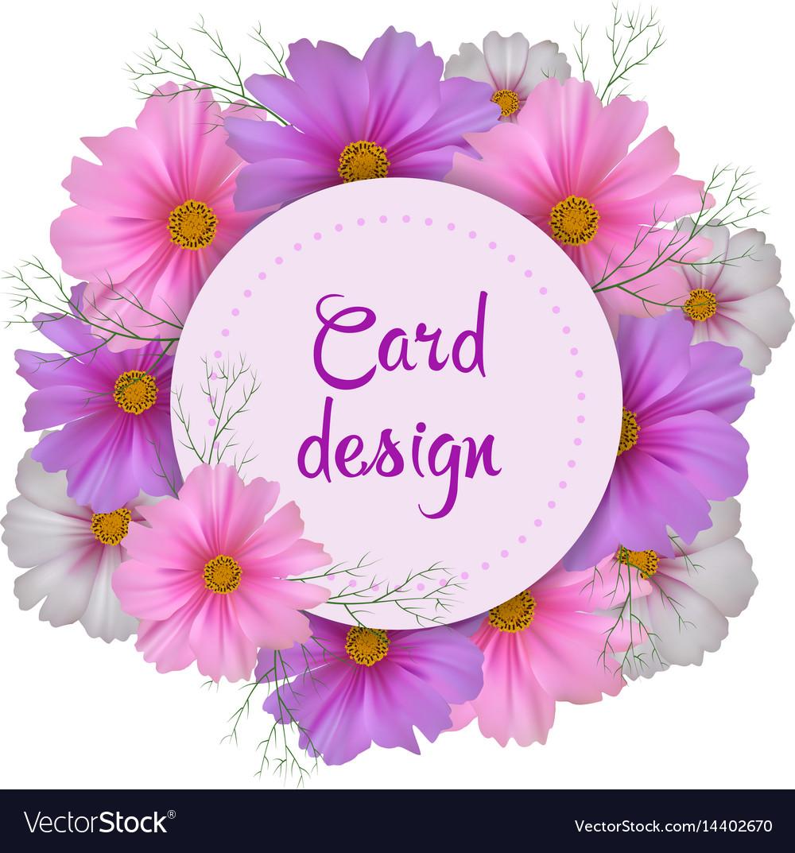 Cosmos flower card design round invitation vector image