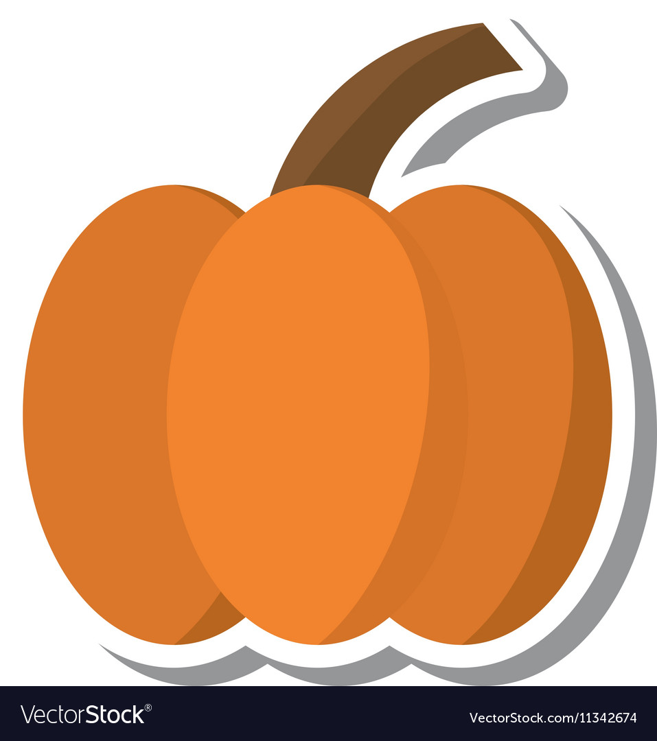 Thanksgiving pumpkin isolated icon vector image
