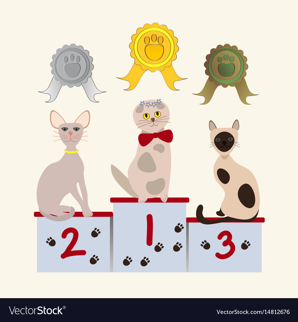 Hand drawn pet competition concept vector image
