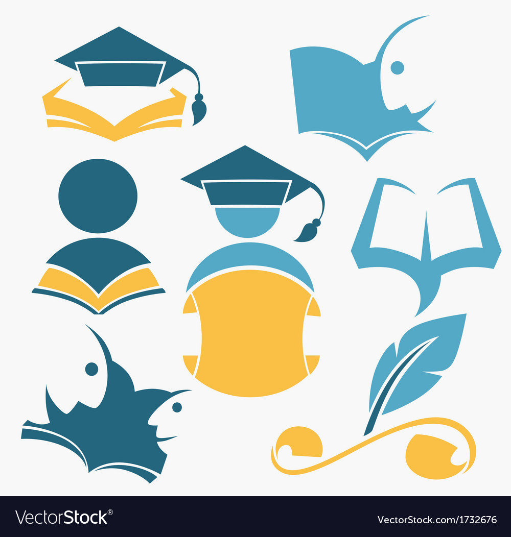 Study and diploma vector image