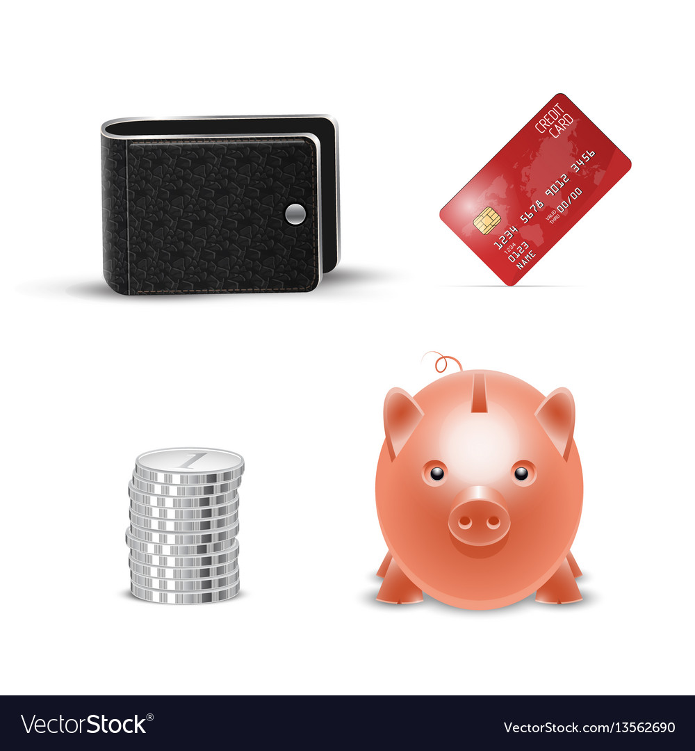 Realistic credit card wallet money vector image