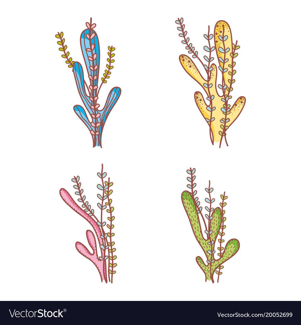 Set of seaweeds doodles vector image