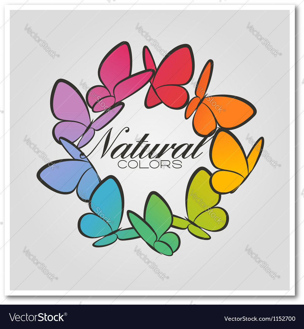 Multicolored butterflies Vector Image