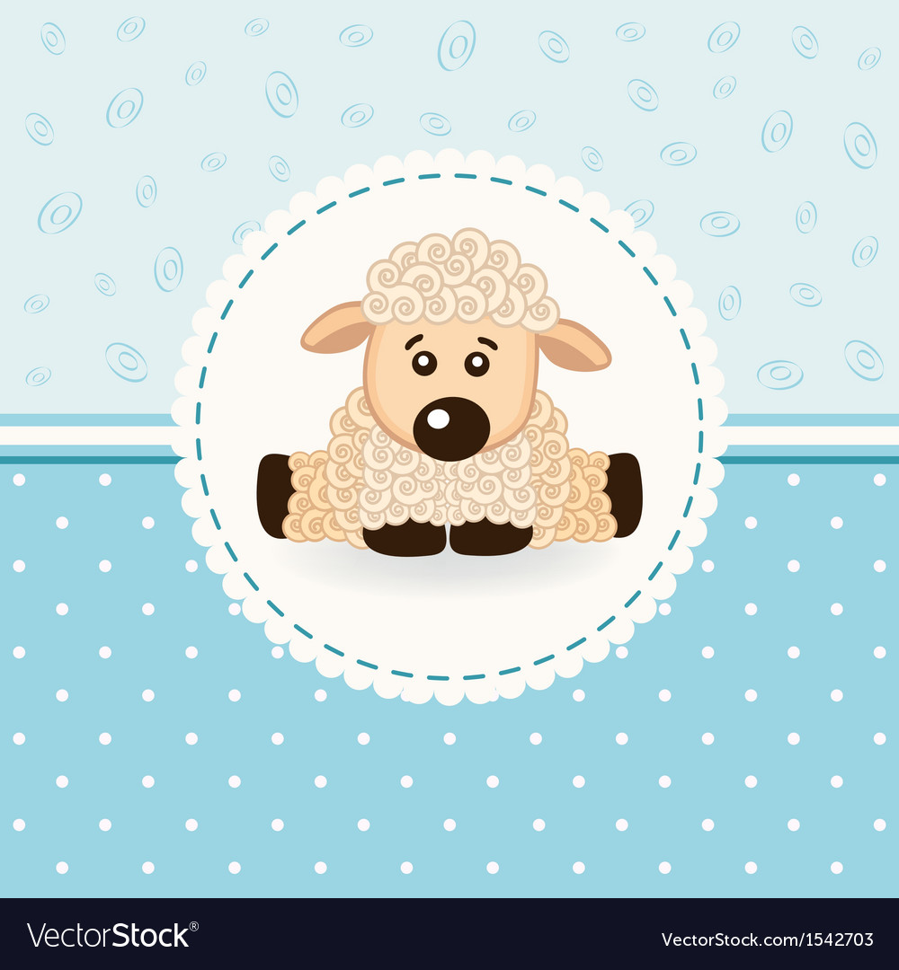 Baby sheep vector image