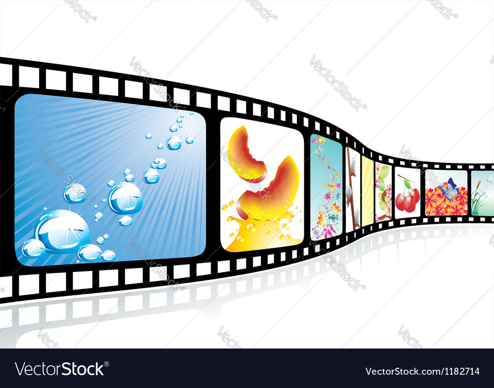 Film strip with nice pictures vector image