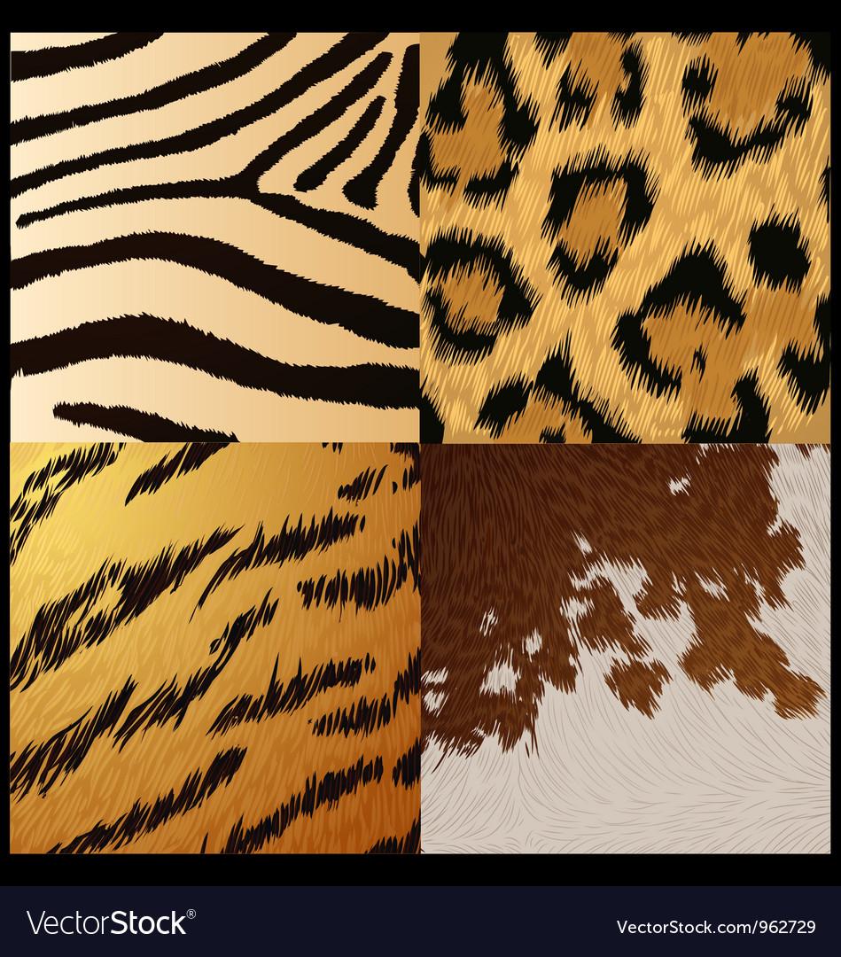 Wild animals skin textures vector image