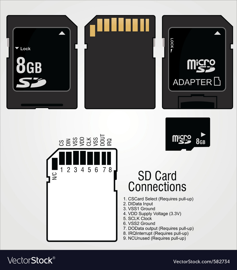 Memory card sd vector image