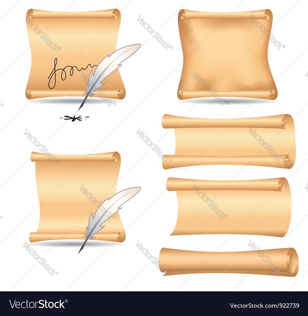 Set - old paper and feathers vector image