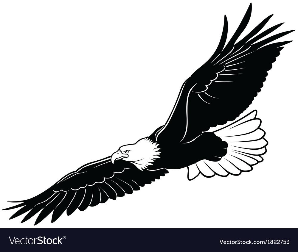 flying bald eagle royalty free vector image vectorstock
