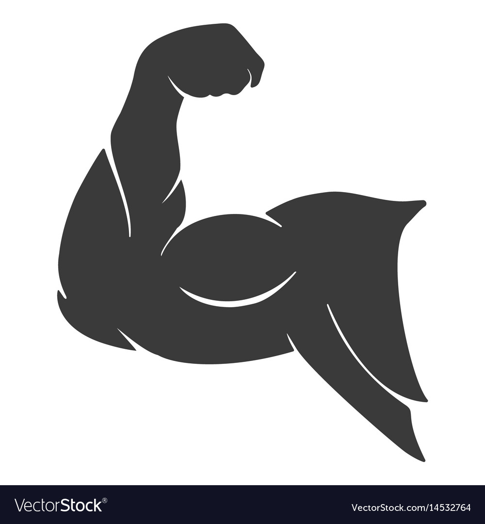 Arm Muscle Vector | www.pixshark.com - Images Galleries ...