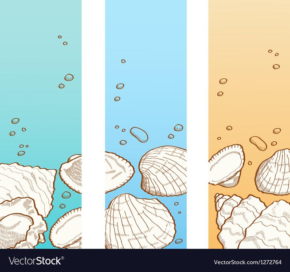 Seashell banner set vector image