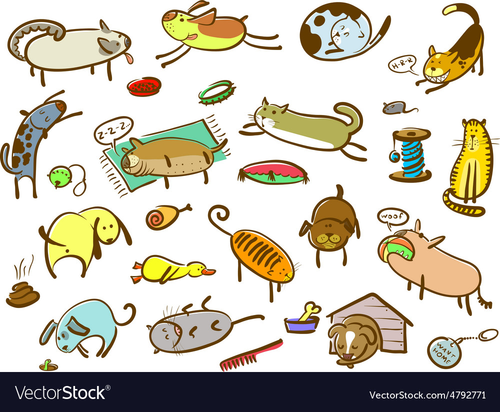 Cats and dogs set vector image