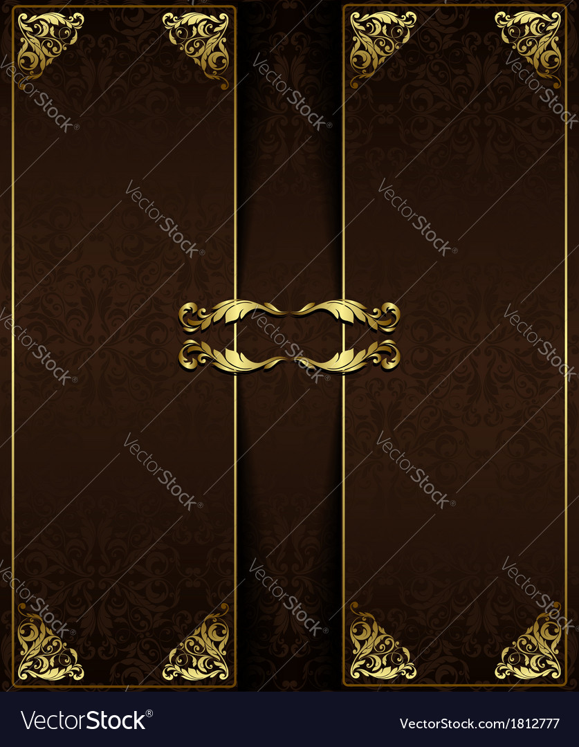 Vintage background with golden elements vector image