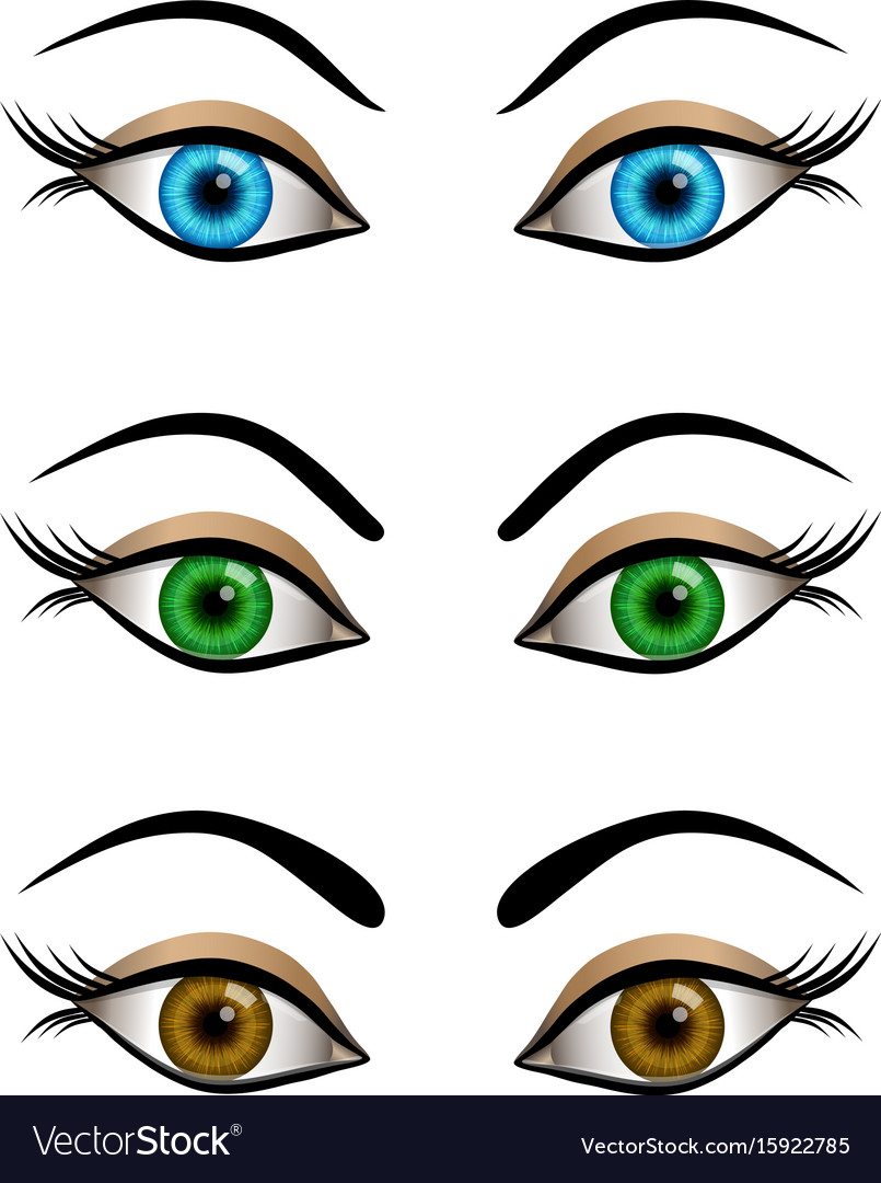 Set of cartoon female eyes blue brown and green vector image