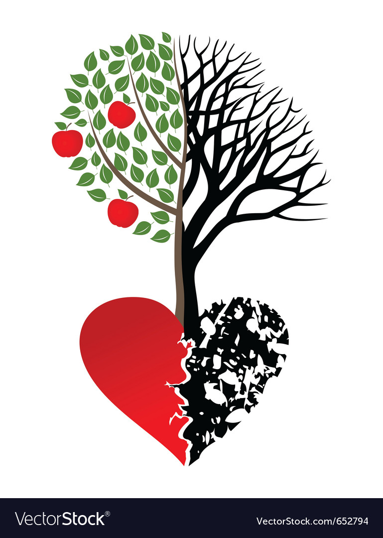 Live and dead tree vector image