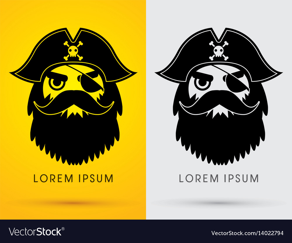 Pirate head face wearing hat and eye patch vector image