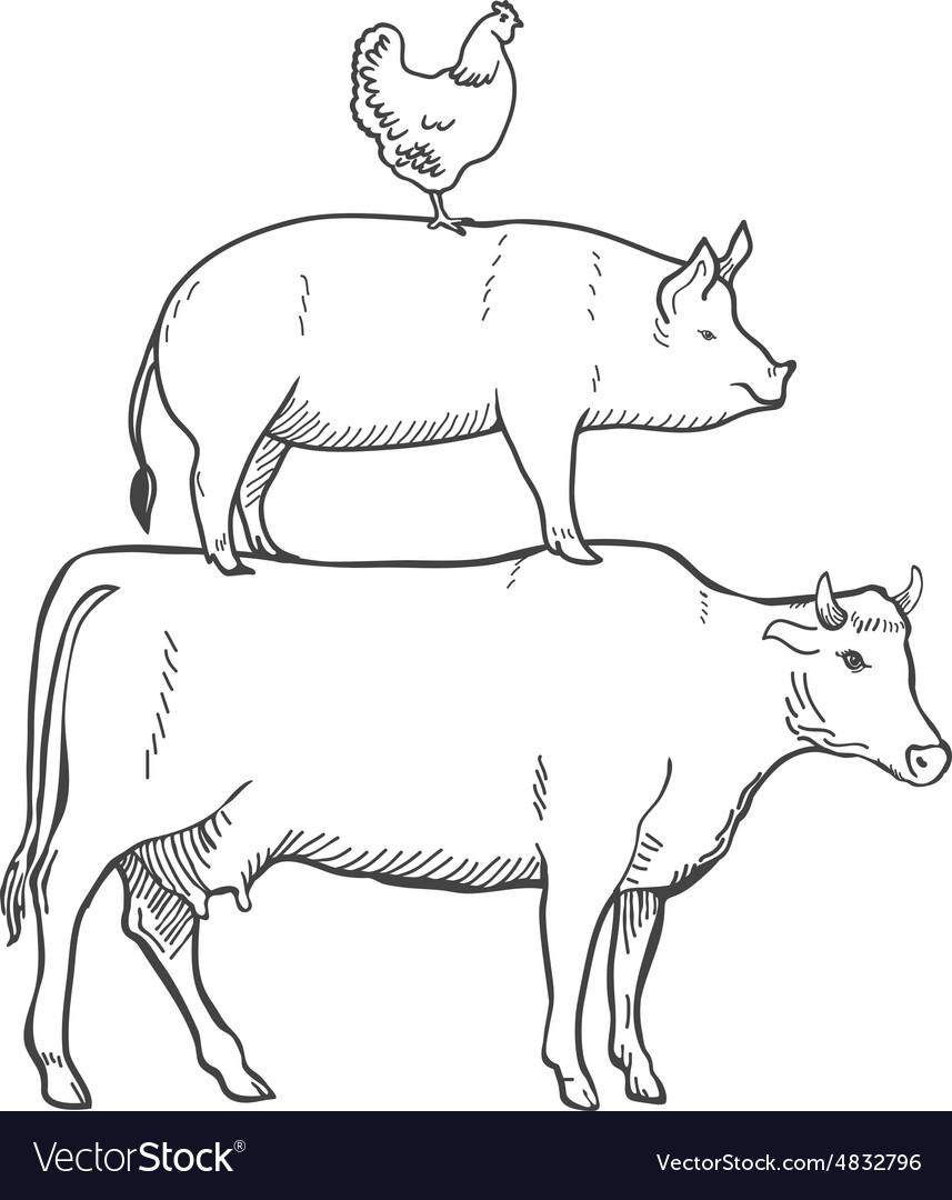 chicken pork cow farm animals royalty free vector image