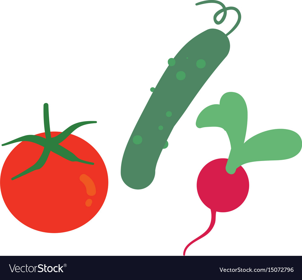 Set of vegetables isolated on white vector image