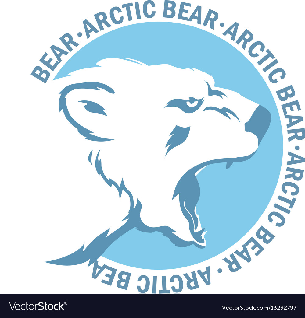 White bear vector image