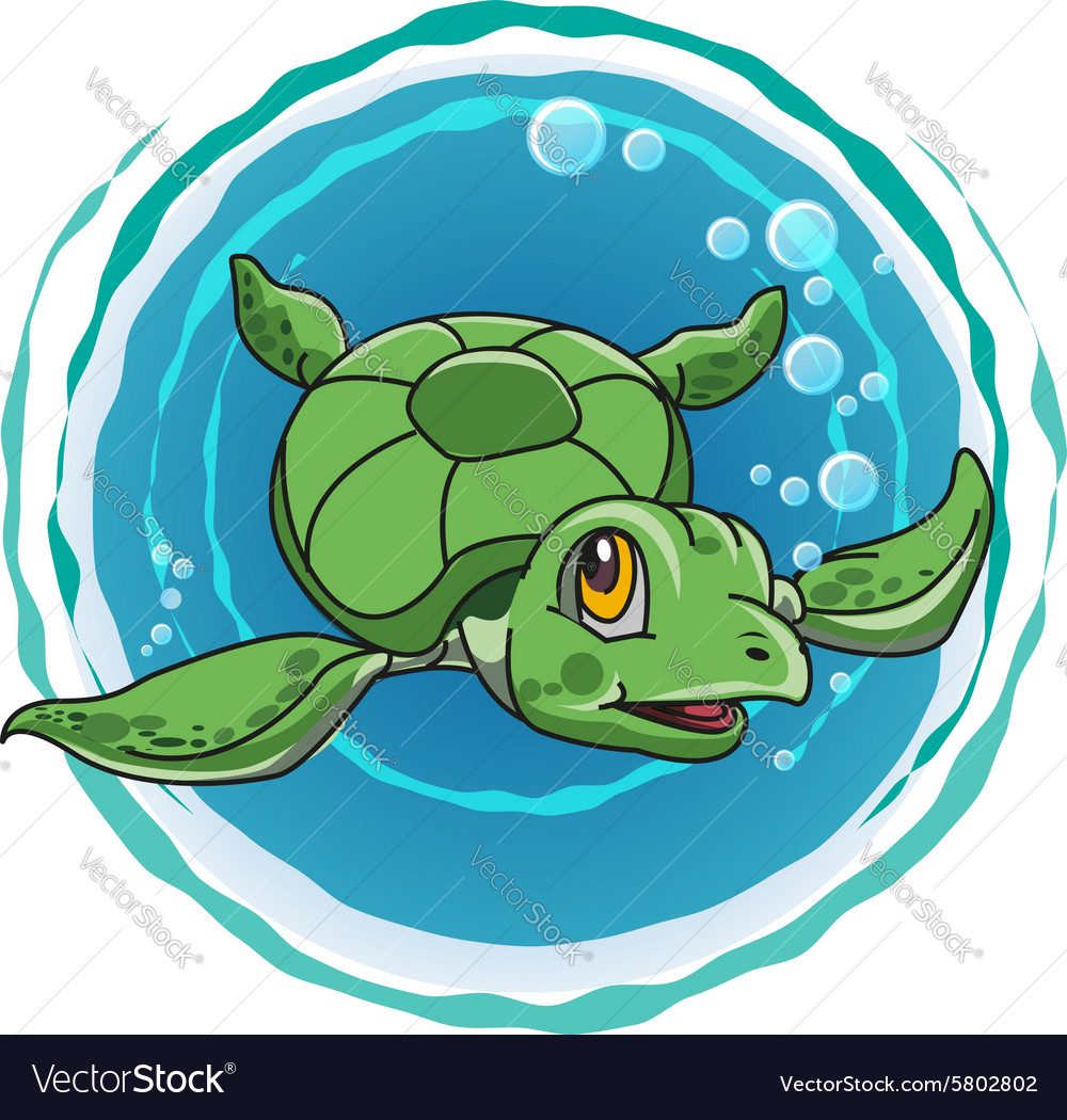 Cute green turtle vector image