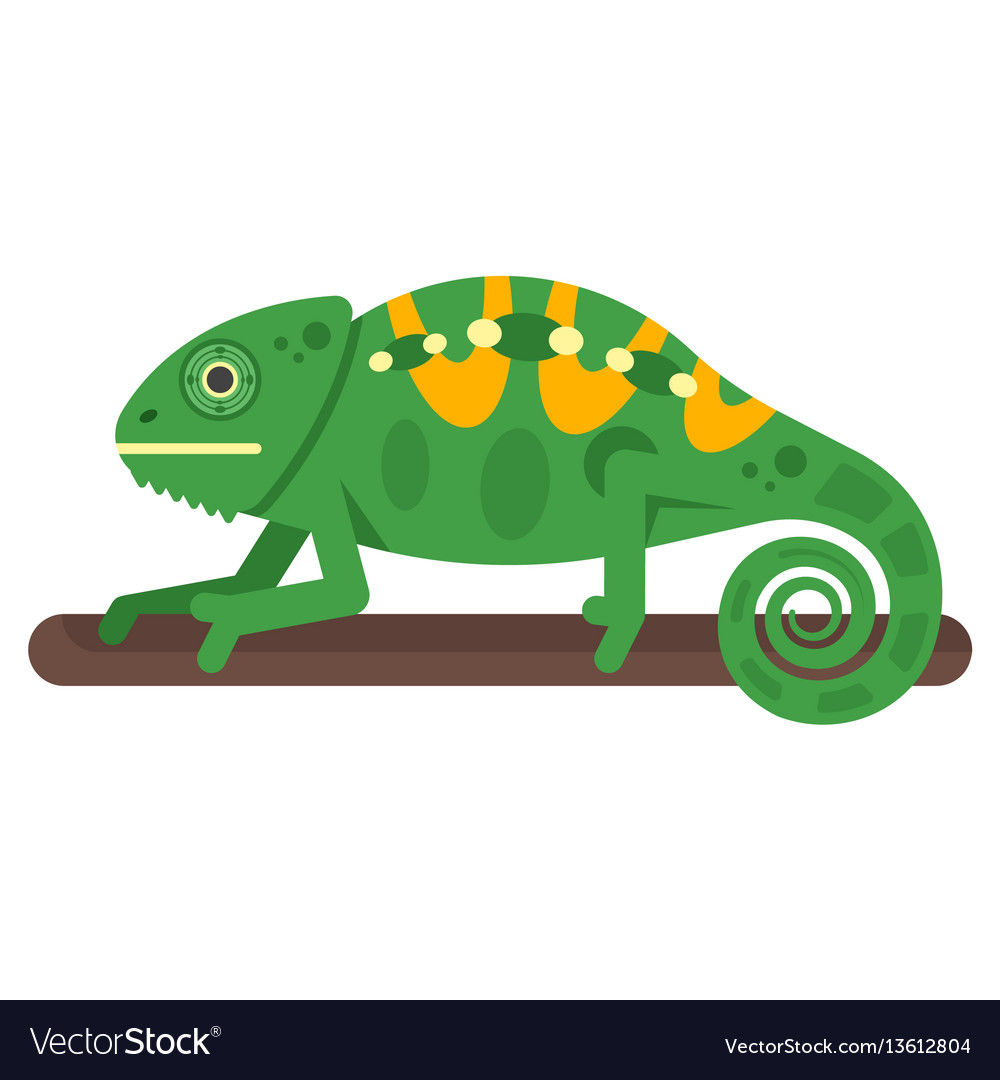Flat style of chameleon vector image