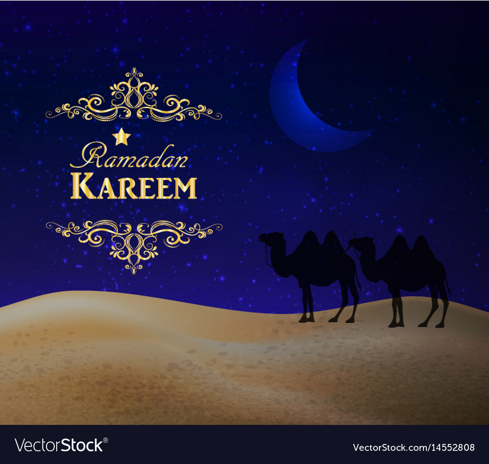 Crescent moon and night desert vector image