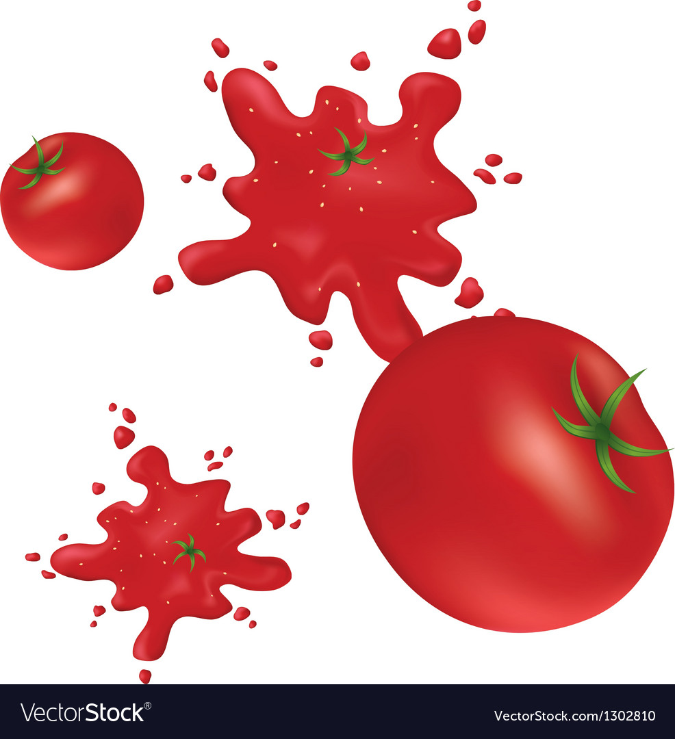 Splashes of red tomatoes on the wall Vector Image