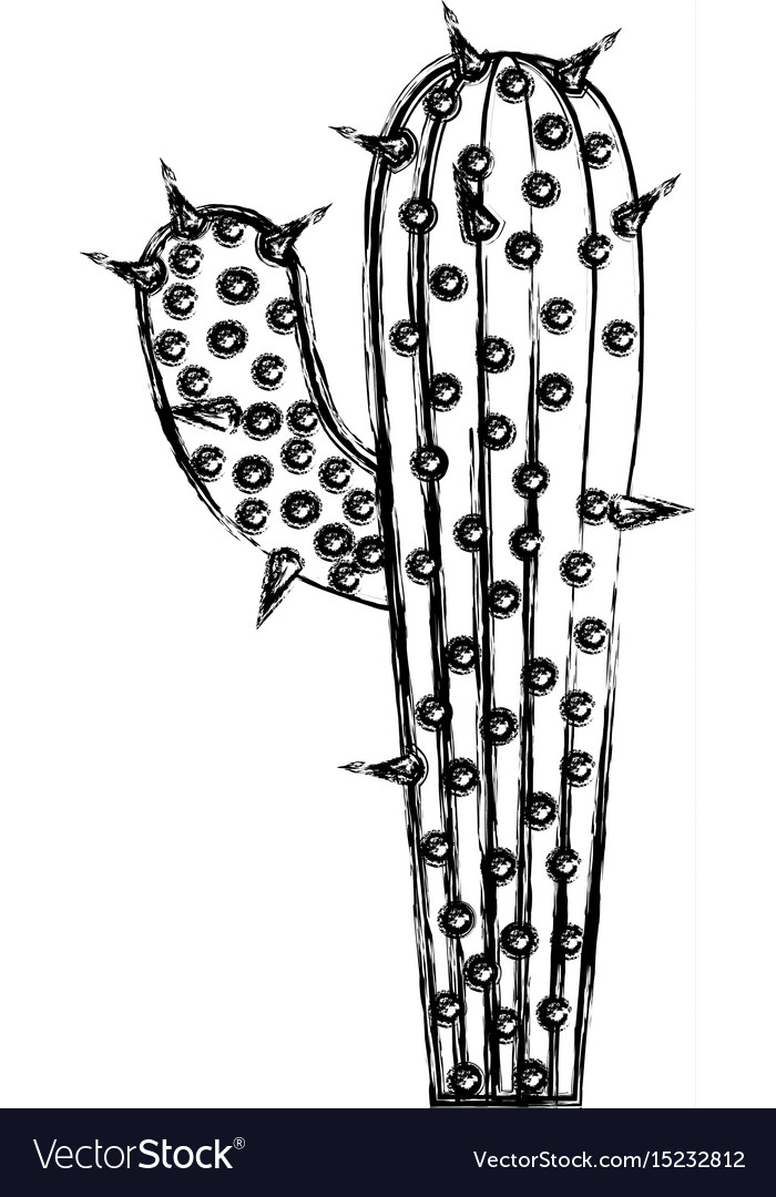 Monochrome blurred silhouette of cactus with big vector image
