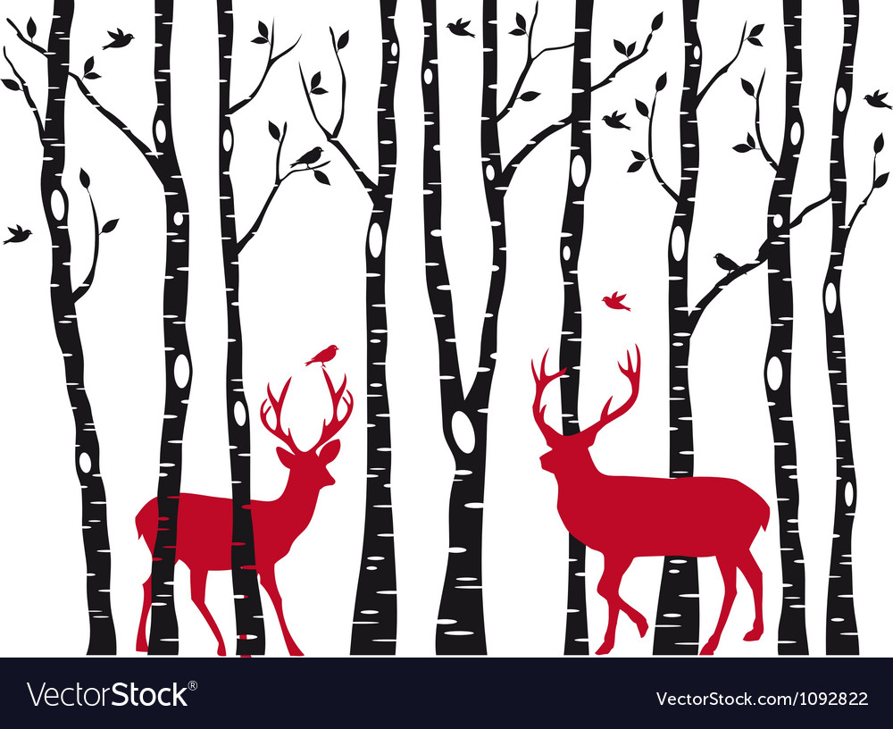 Birch tree forest with deers vector image
