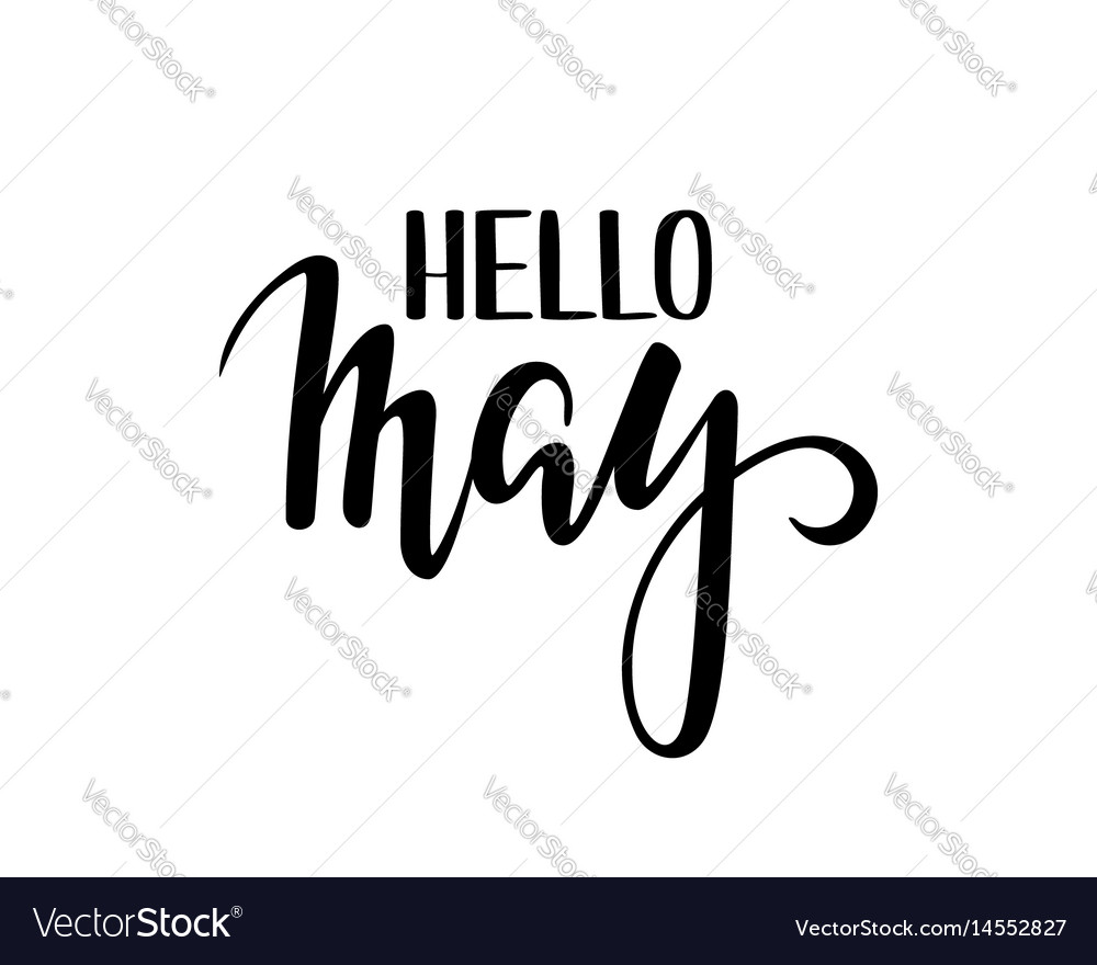 Hello may hand drawn calligraphy and brush pen vector image