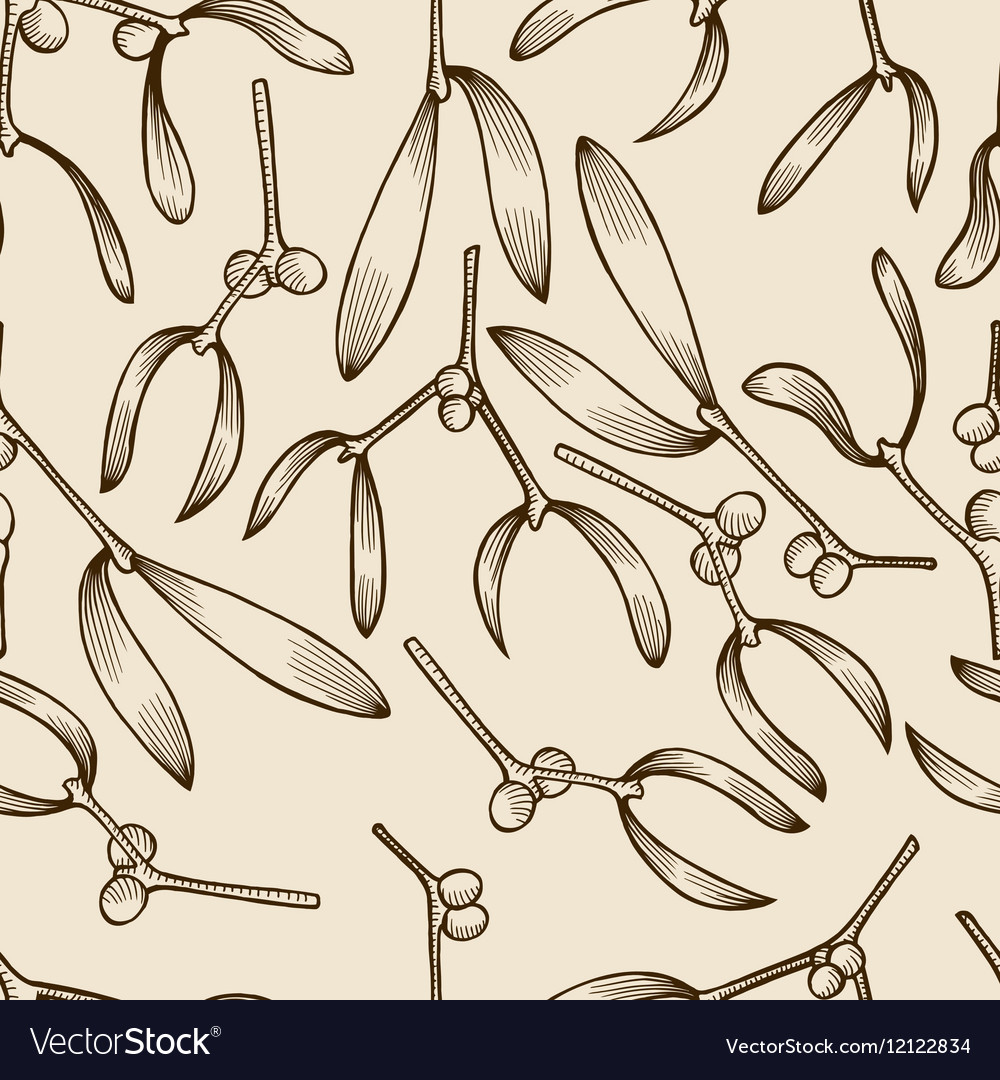 Mistletoe twigs vintage seamless pattern vector image