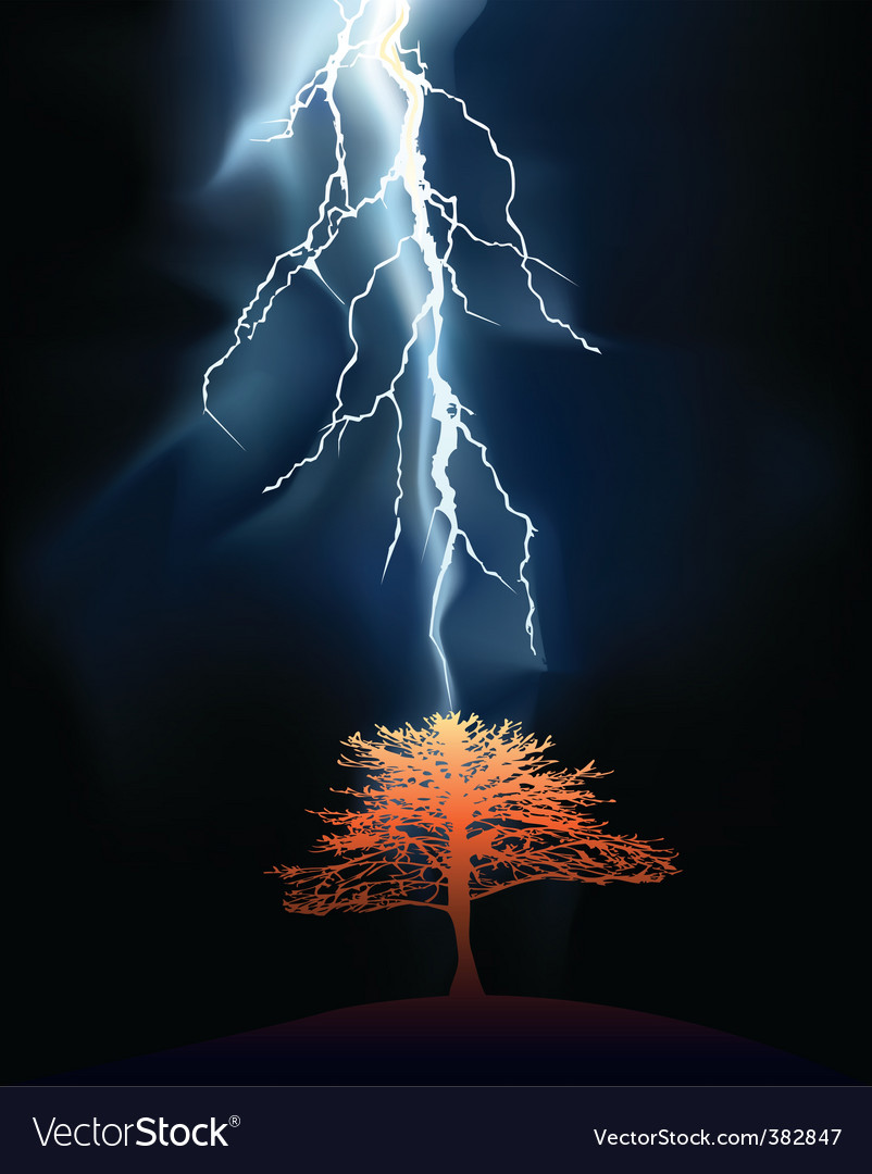 Lightning strikes tree vector image