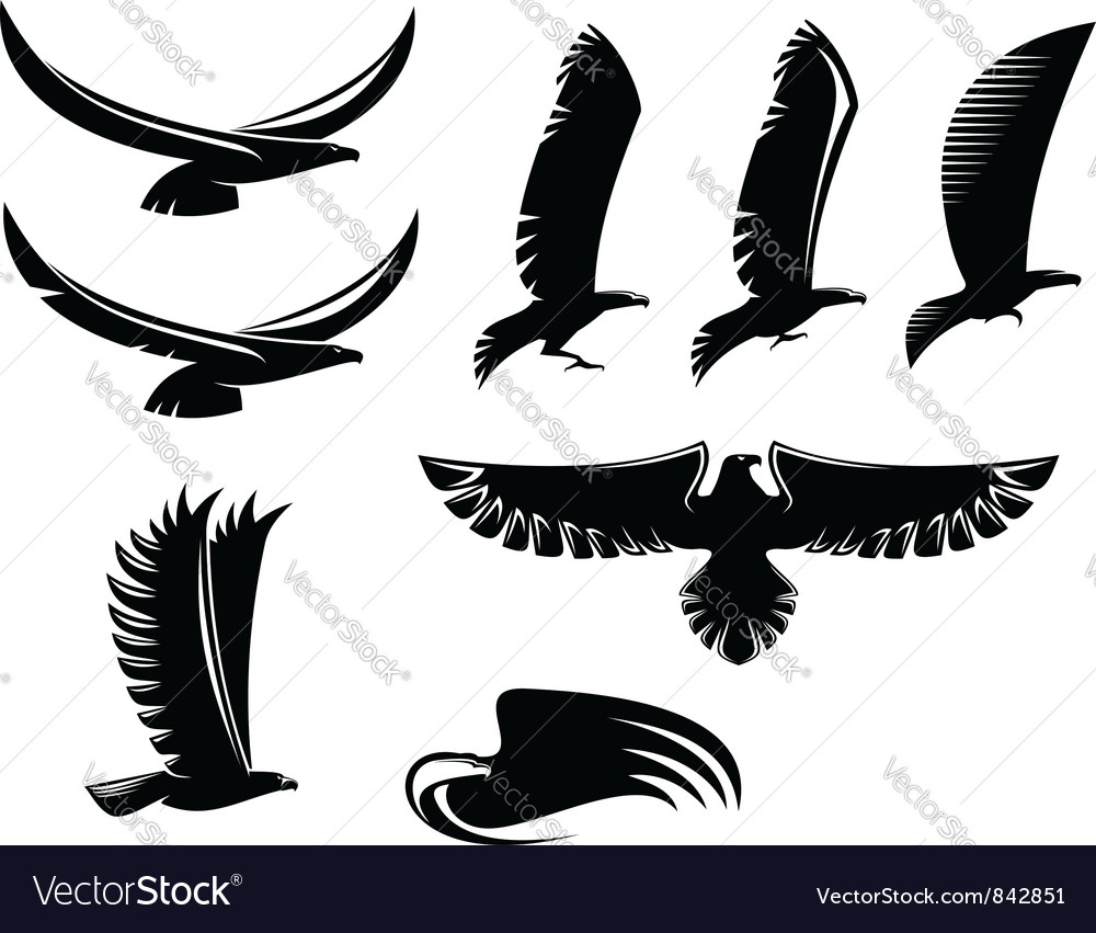 Set of heraldry black birds vector image