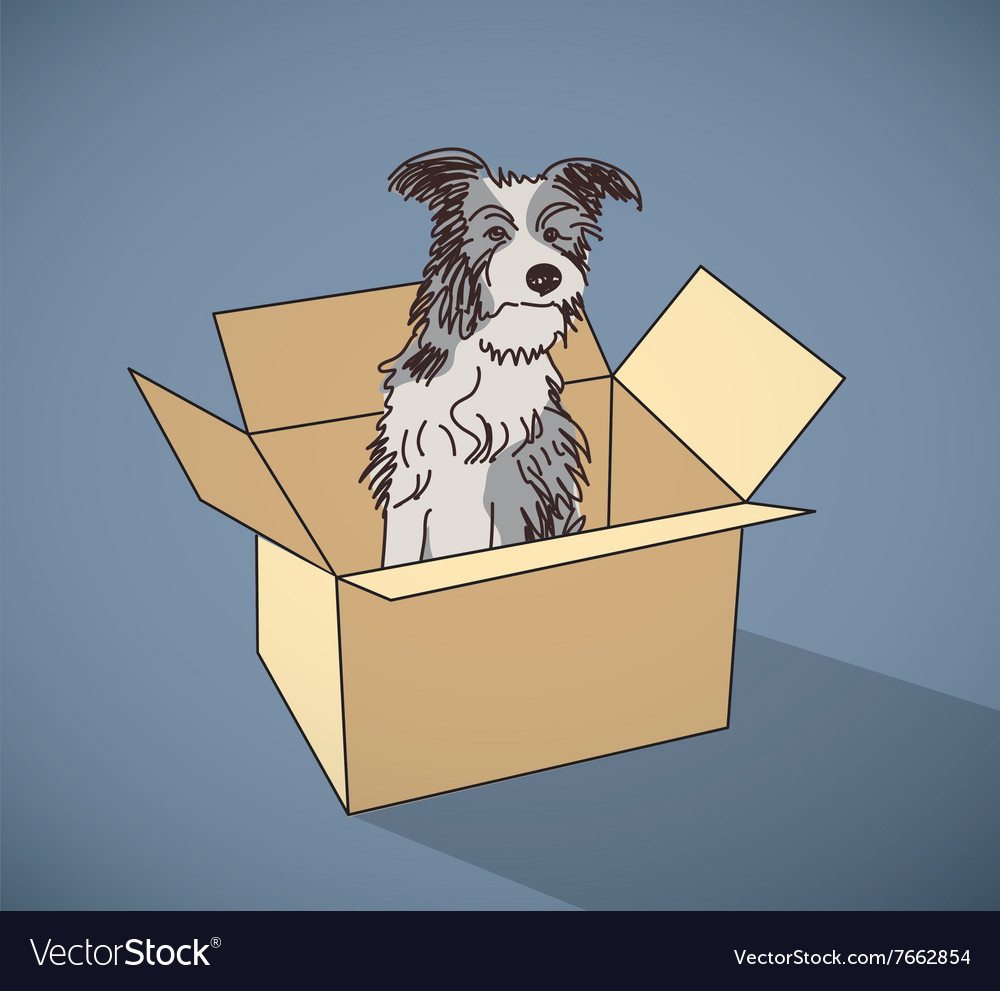 Sad homeless street dog alone in box color vector image