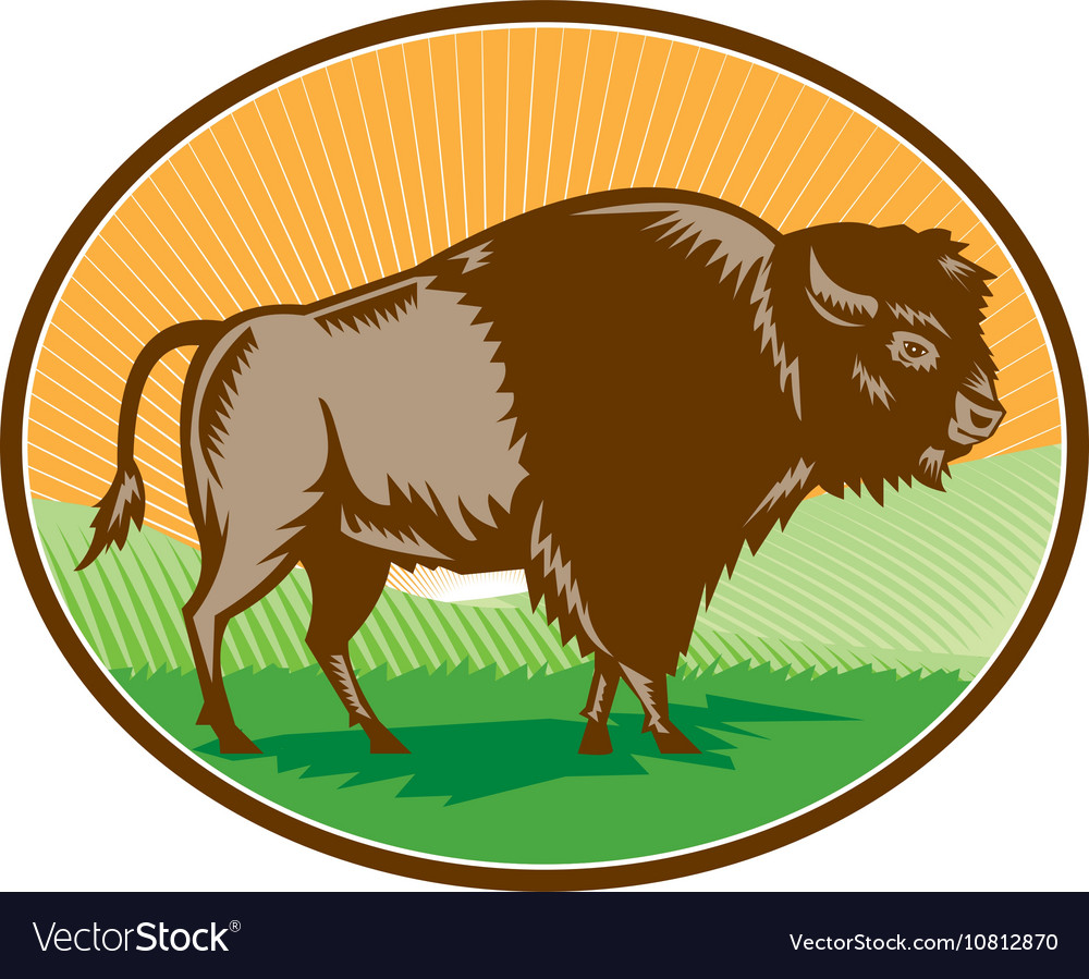 American Bison Oval Woodcut vector image
