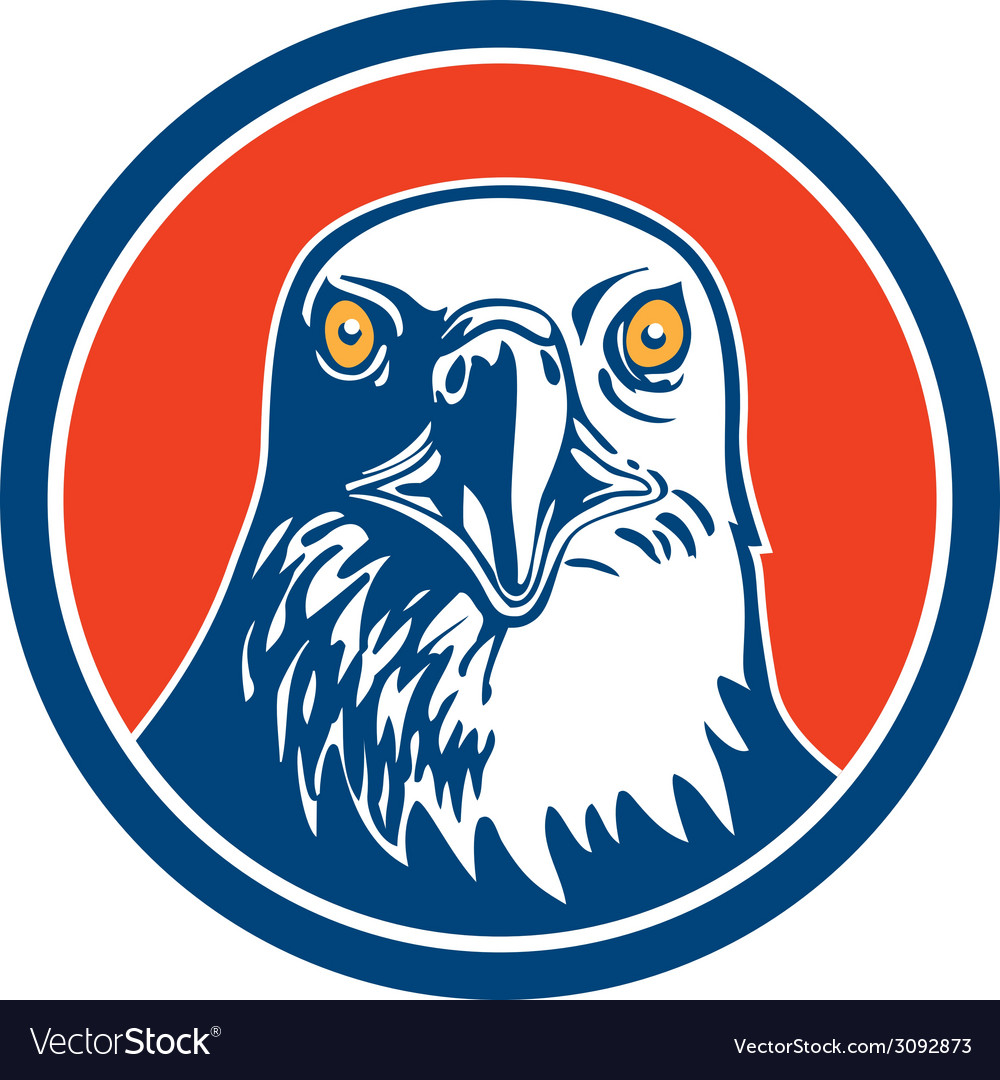American Bald Eagle Head Circle Retro vector image