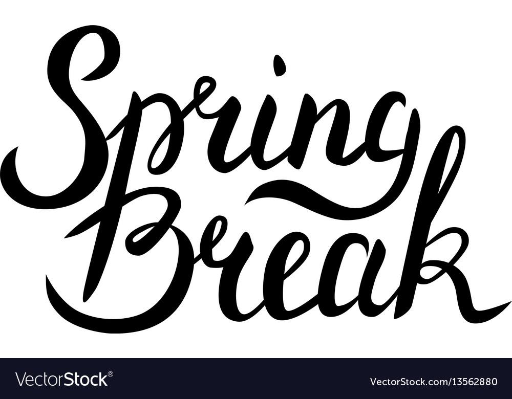 Spring break lettering vector image