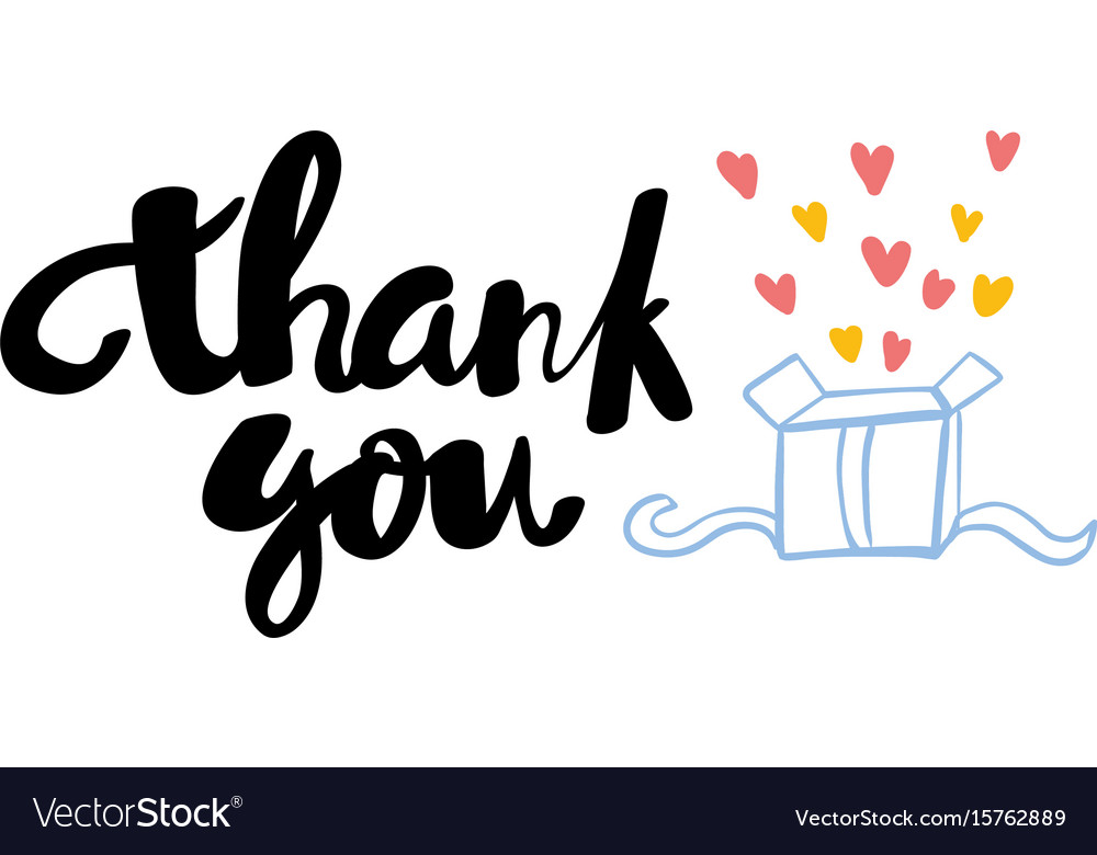 Thank you lettering hand drawn vector image