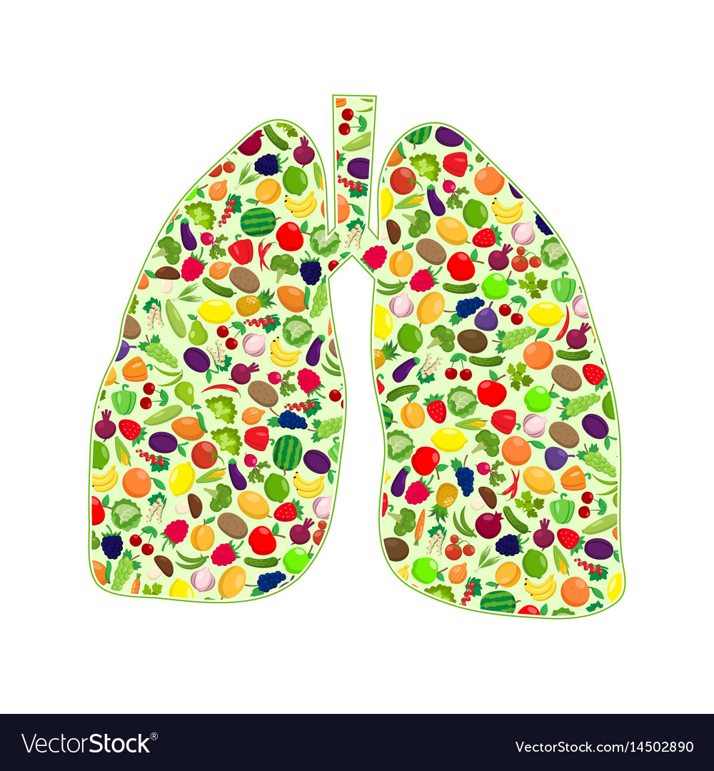 Lungs healthy silhouette vector image