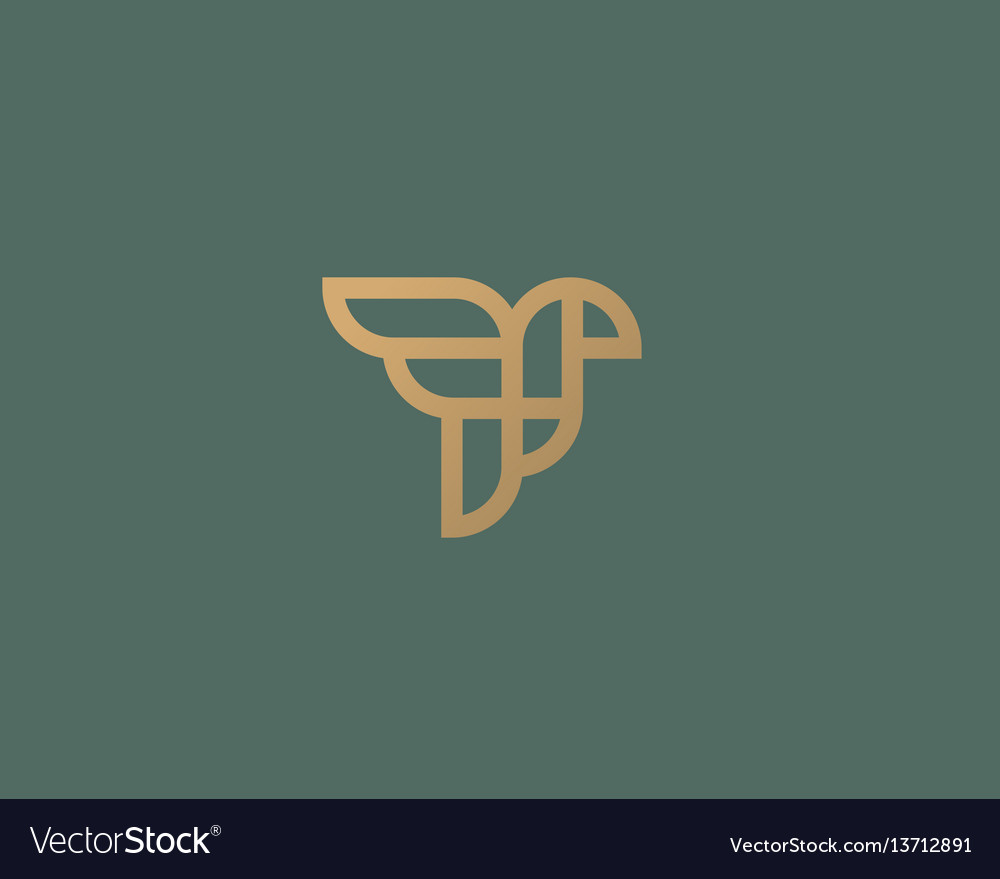Abstract bird logo design creative eagle line vector image