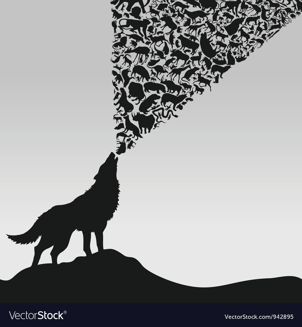 Wolf5 vector image