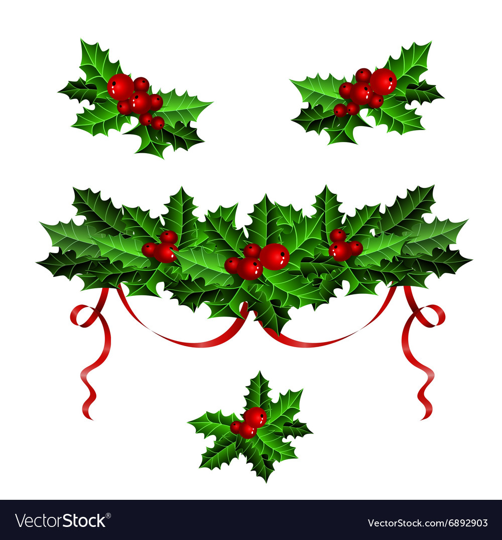 Decorative elements with Christmas holly set vector image