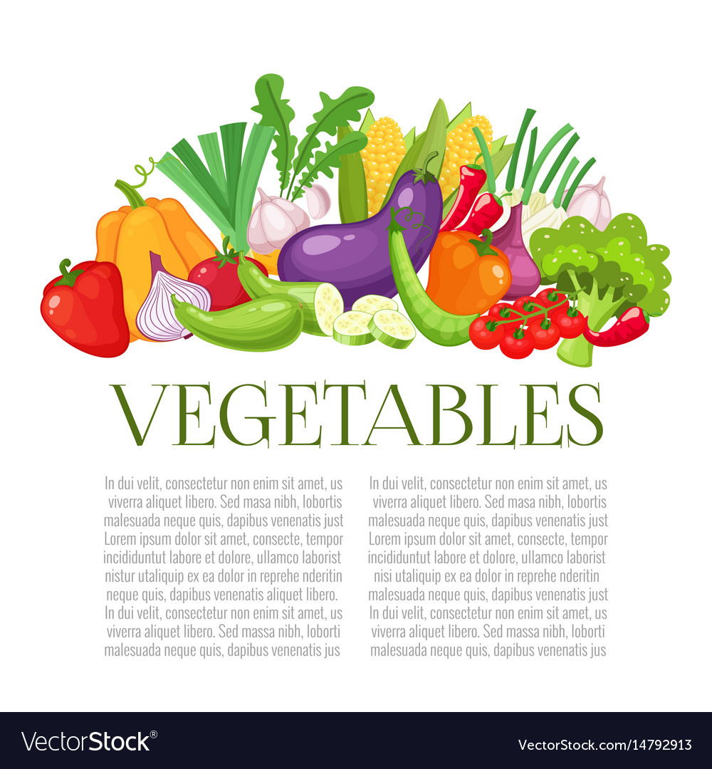 Vegetables top view frame farmers market menu vector image