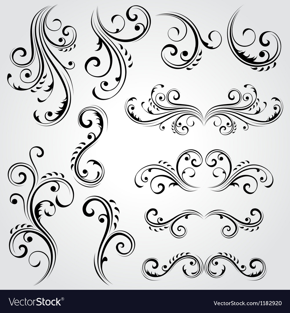 Decorative floral elements Vector Image