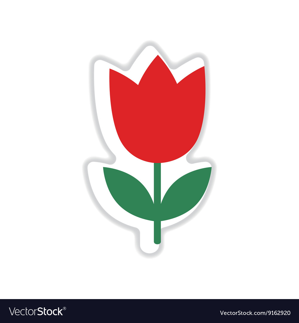 Paper sticker on white background tulip blooms