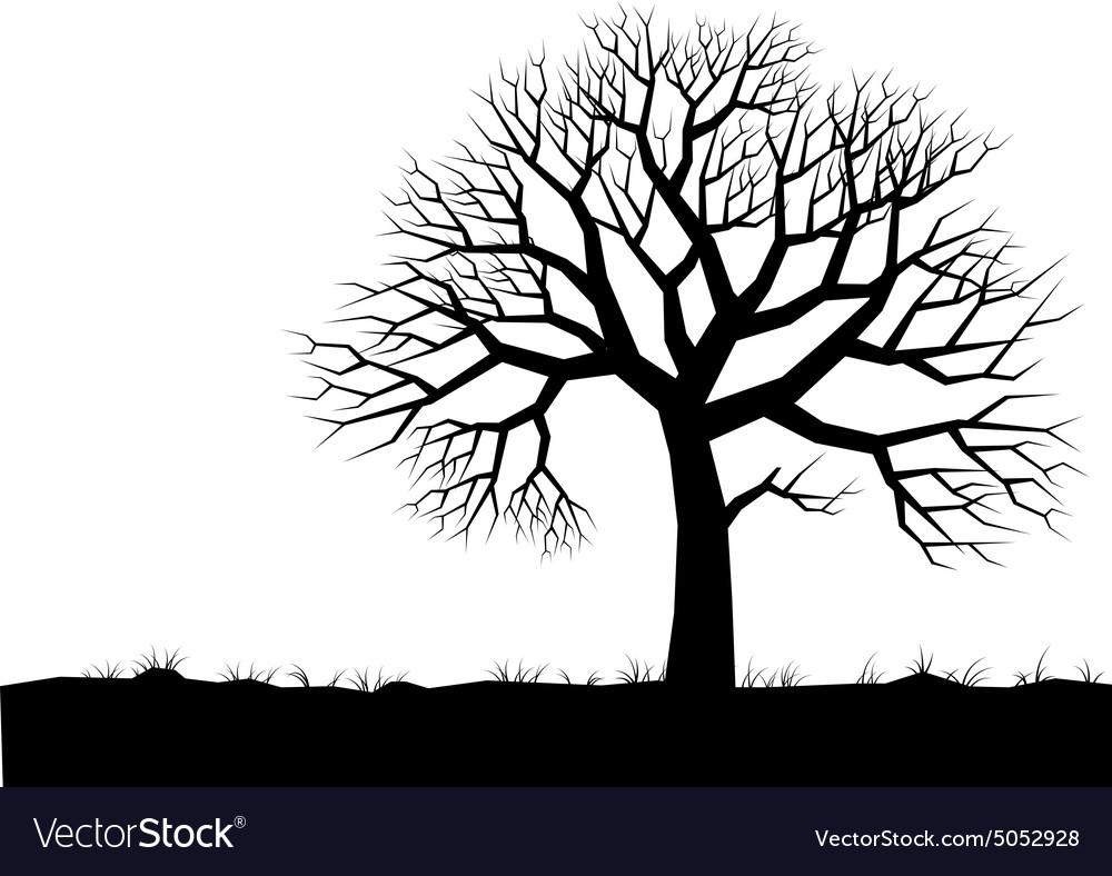 Alone tree vector image