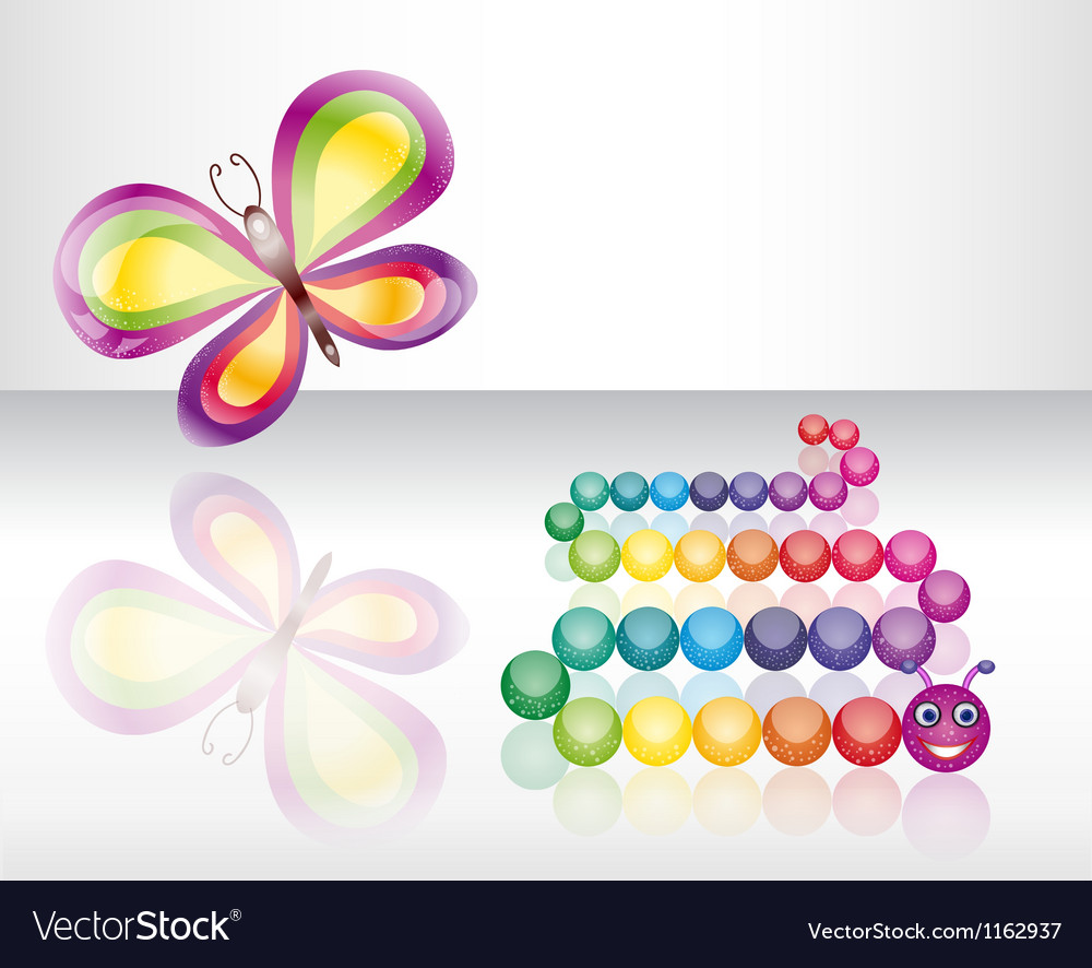 Isolated butterfly and caterpillar vector image