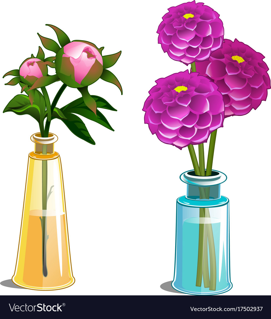 Blooming dahlia and non blooming flower in vase vector image blooming dahlia and non blooming flower in vase vector image reviewsmspy