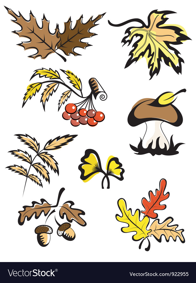 Fall images for decoration vector image