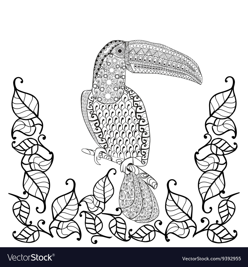 Stress coloring books - Toucan Bird Anti Stress Coloring Book For Adults Vector Image